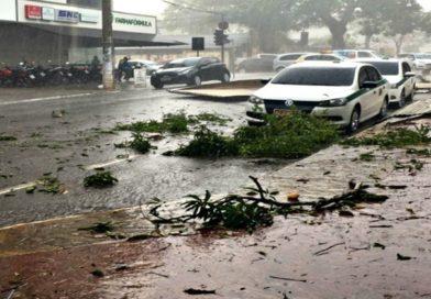Forte temporal causa destruição na capital